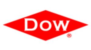 Dow - Diversityday